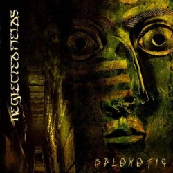 Neglected Fields - Splenetic