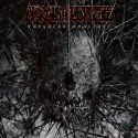 Akral Necrosis - The greater absence